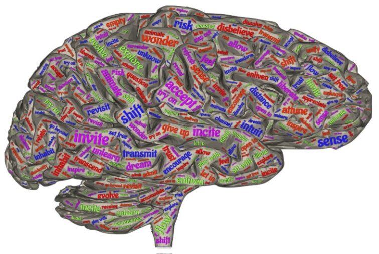 brain-4014176_1920