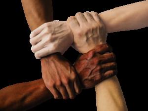 CHUS BLASCO / El marco mental de la colaboración
