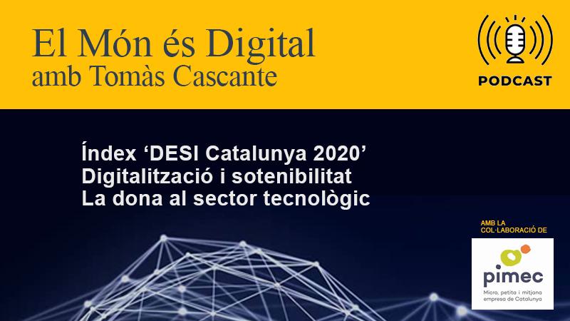 RÀDIO / Catalunya Índex DESI / Digitalització i Sotenibilitat / Dona i TIC